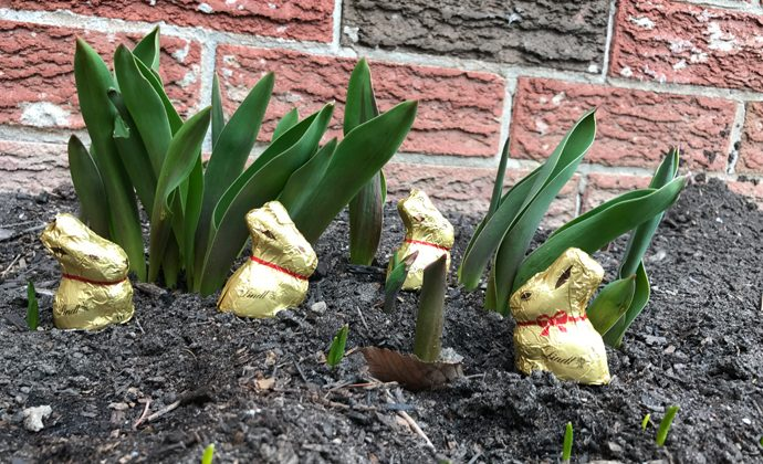 Tips for a Fun Easter Scavenger Hunt for All Ages